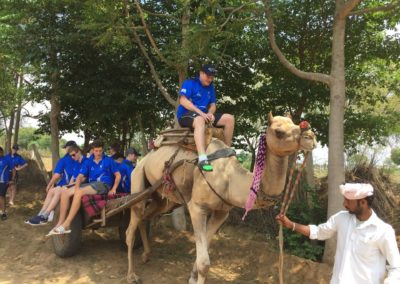 camel-work