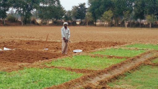 Ikaki Bagh is part of a growing movement re-discovering traditional Indian composting practices